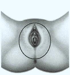 thermiva-skin-renu